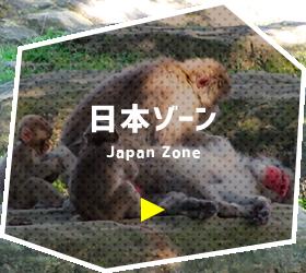 日本ゾーン