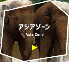 アジアゾーン